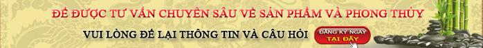 tu-van-chuyen-sau-phong-thuy-va-san-pham