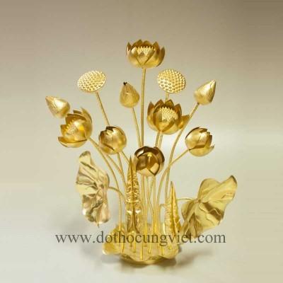 Đĩa sen đồng vàng